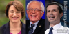 Bernie, Pete and Amy Run Away with New Hampshire Primary.